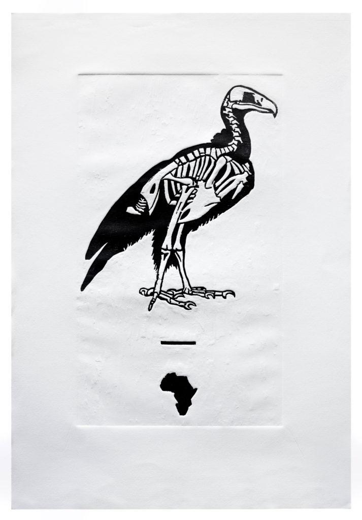 uccello senza ali #050057 - 1/2